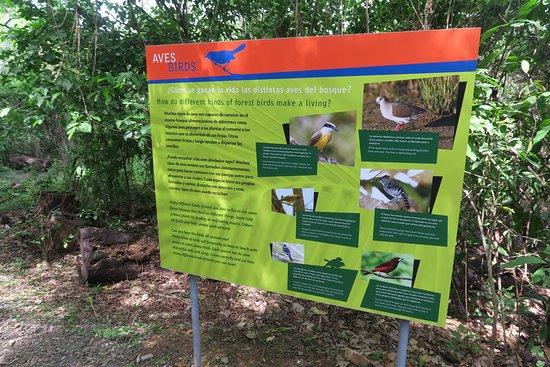 Punta Culebra Nature Center: Informative signs in English