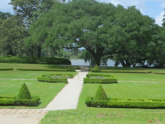 Middleton Place: one of the garden areas