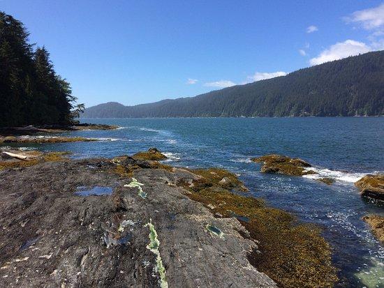 Port Renfrew, Canada: photo4.jpg