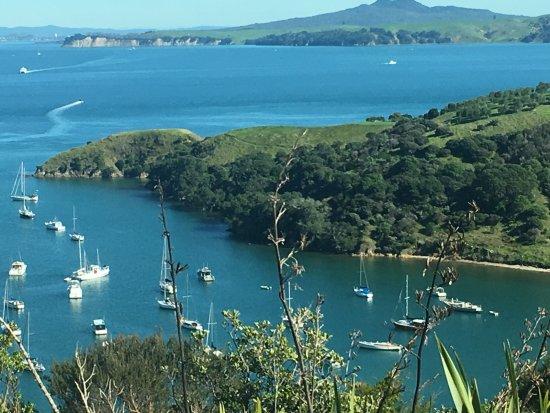 Pulau Waiheke, Selandia Baru: Waiheke Island harbor