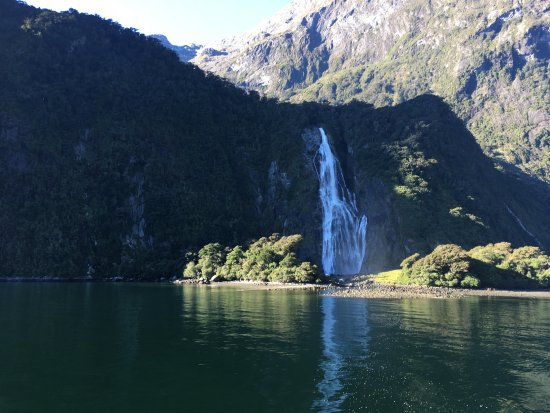 Jucy Cruise Milford Sound: One of many waterfalls