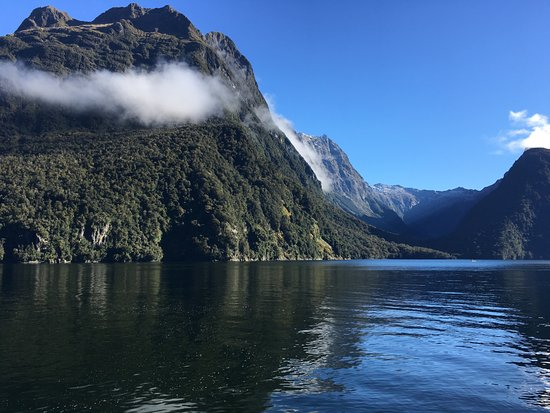 Jucy Cruise Milford Sound: Milford Sound scenes