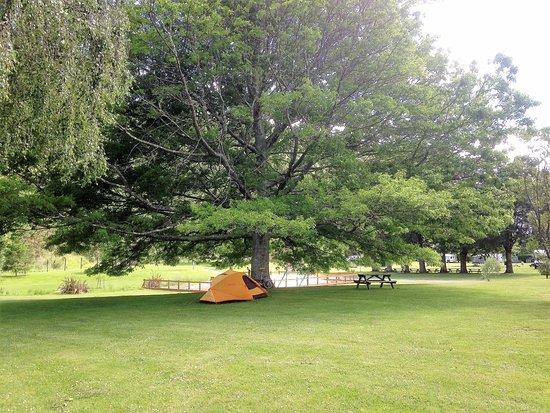 Waikawa, Nouvelle-Zélande : Beautiful grounds