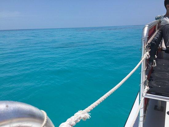 Captain Hook's Marina & Dive Center: photo0.jpg