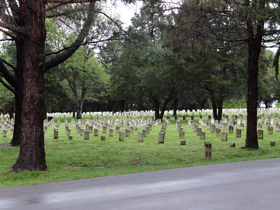 Murfreesboro, TN: National Cemetery