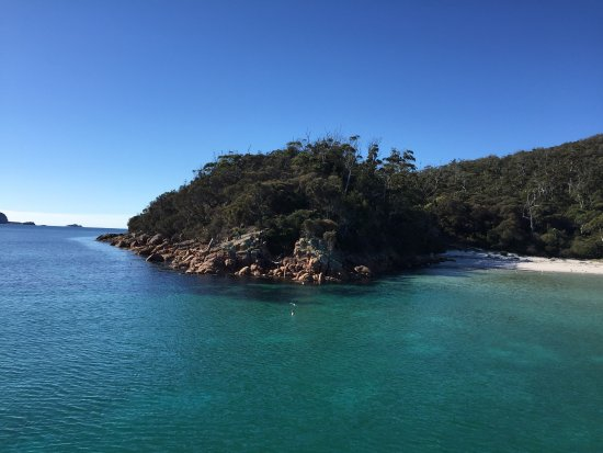 Coles Bay, Australia: We stopped to have lunch at Wineglass bay.