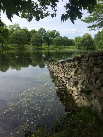 New Windsor, NY: Andy Goldsworthy stone wall disappears in the lake and resurfaces on the other side