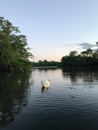North Babylon, NY: Belmont Lake State Park