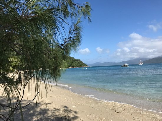 Fitzroy Island Resort: photo1.jpg