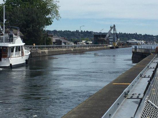Hiram M. Chittenden Locks: photo4.jpg