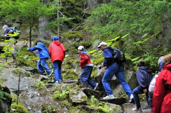 Skagway Shore Excursion: Chilkoot...