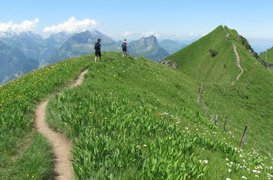 Private Full-Day Alpine Ridge Hiking Tour from Lucerne