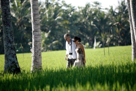 Luxe Villas Ubud Tripadvisor