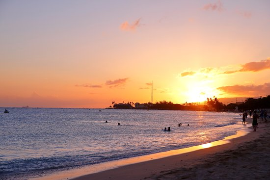 Ala Moana Beach Park Photo