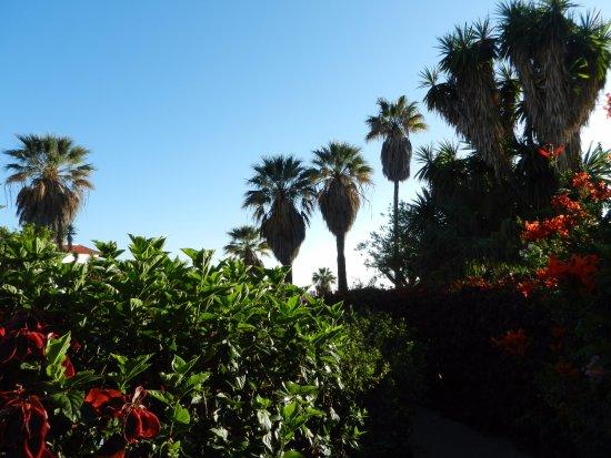 la palma jardin los llanos de aridane spanien omd men och prisj mf relse tripadvisor. Black Bedroom Furniture Sets. Home Design Ideas