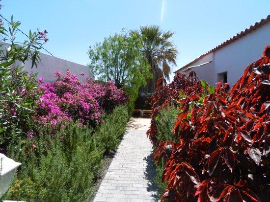 la palma jardin bewertungen fotos preisvergleich los llanos de aridane spanien. Black Bedroom Furniture Sets. Home Design Ideas
