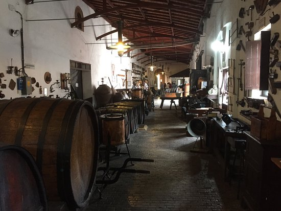 Museo del vino : photo3.jpg