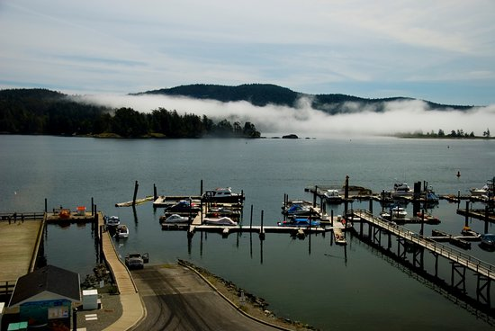 Sooke, Canada: Even the mist was tranquil