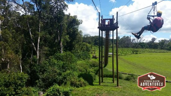 Makawao, HI: The zip 2 tower