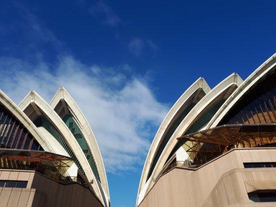 The Opera House to the Botanic Gardens Walk: Opera House