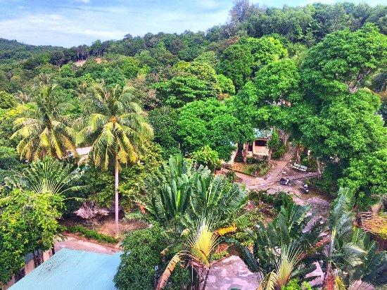 Coi Nguon Phu Quoc Hotel : Территория отеля