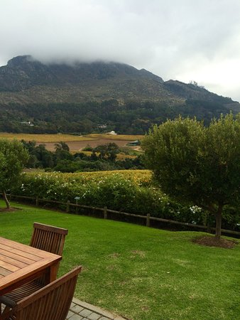 Constantia, Sydafrika: photo1.jpg