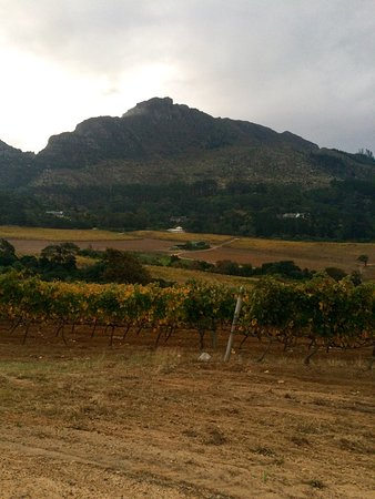 Constantia, Sydafrika: photo3.jpg