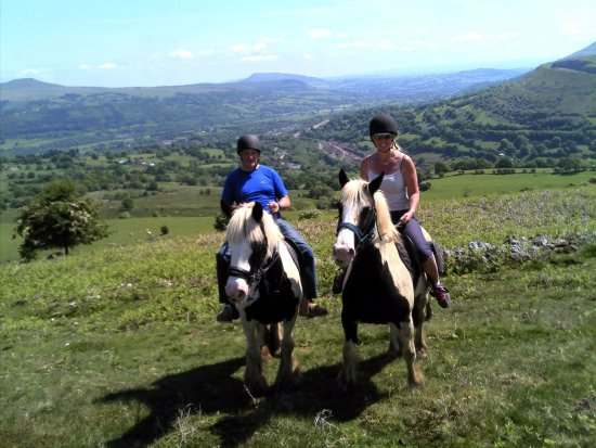 Wern Trekking and Riding Centre