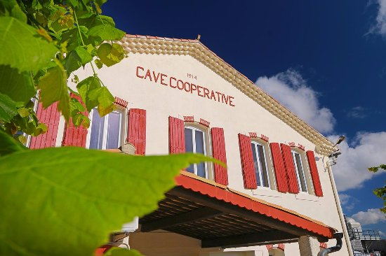 Saint-Laurent-de-la-Cabrerisse, Francia: La cave vous accueille sous le soleil du Sud
