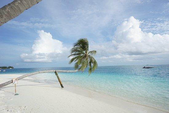 Family Hotels in Maldives - TripAdvisor