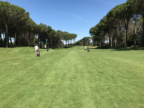 Gualta, Spain: Fairways on the Forest course