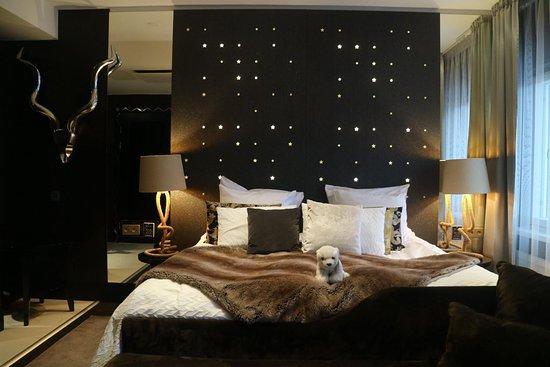 Arctic Light Hotel - Magic Room