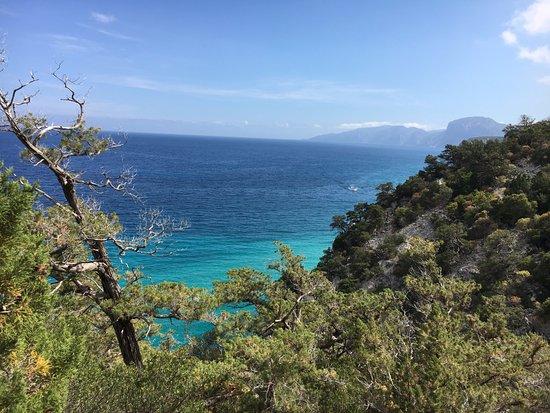Corsica Rando Aventure : rando sur les falaises de Cala Gonone (grotte Blu Marino)