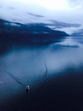 Lake Crescent Lodge: 日が暮れていく時間は神秘的の一言。
