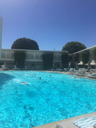 The Beverly Hilton: Pool View in Back Cabana Rooms
