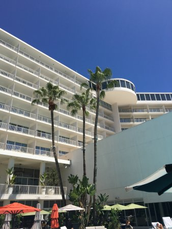The Beverly Hilton: View from Pool towards Wilshire Tower