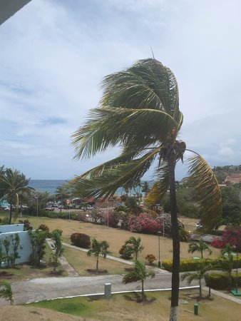 Timothy Beach Resort: Caribbean view