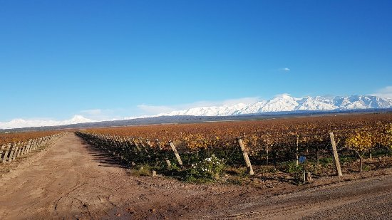 Agrelo, Argentina: IMG-20170526-WA0006_large.jpg