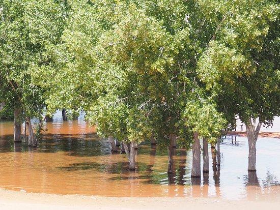 Hurricane, UT: Stromy ve vodě - pro nás zvláštní