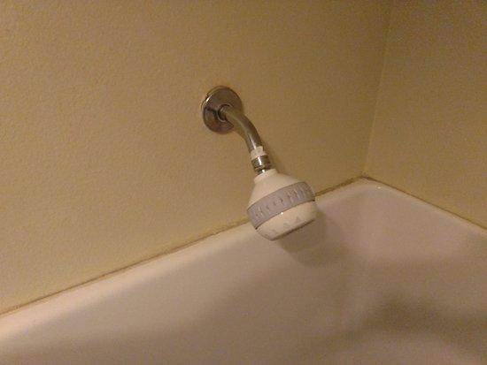 Ellensburg, Вашингтон: Mold in shower