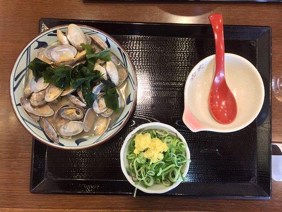 Kariya, اليابان: photo0.jpg