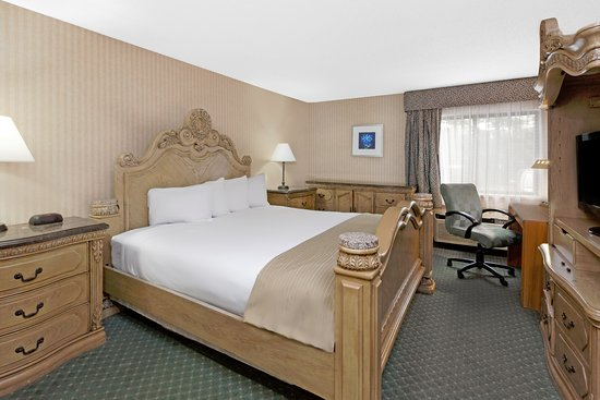 Bridgeport, MI: KING SUITE