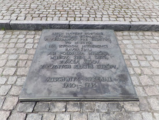 """an examination of the town of auschwitz in southern poland Town near auschwitz"""" a richly and painfully detailed examination of   executive of the landkreis or county of bedzin,"""" in southern poland,."""