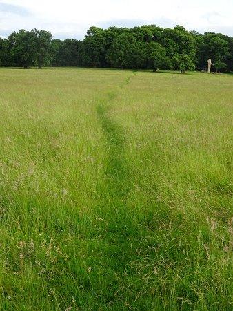 Richmond-upon-Thames, UK: A pleasant path