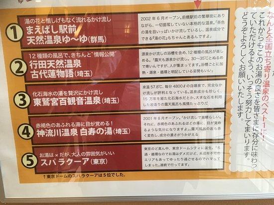 Maebashi, Japan: 何かの企画で全国立ち寄り温泉のベスト1になったこともあるようでした。