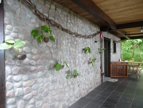 le mur en pierres de la cuisine décoré de suspensions de plantes