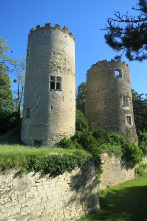 Cinq Mars la Pile, France: Les deux tours de l'ancien château