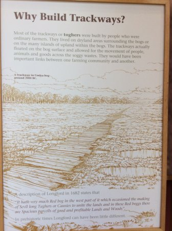 Keenagh, Irlanda: A great explanation of this ancient timber track