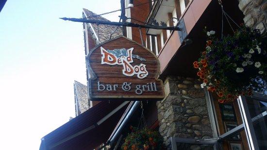 De'd Dog Bar and Grill: D'ed Dog
