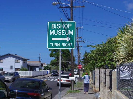 Bishop Museum: Please walk from Bus stop@Kapalama Av for sea 1 block. Then you can find it.